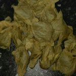 Pile of used green teabags
